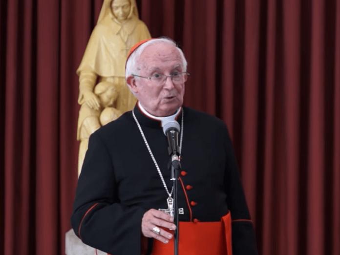 Cardenal Cañizares cultura muerte