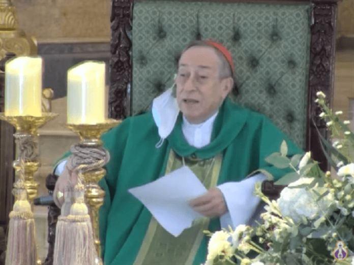 Cardenal Maradiaga gobierno corrupción