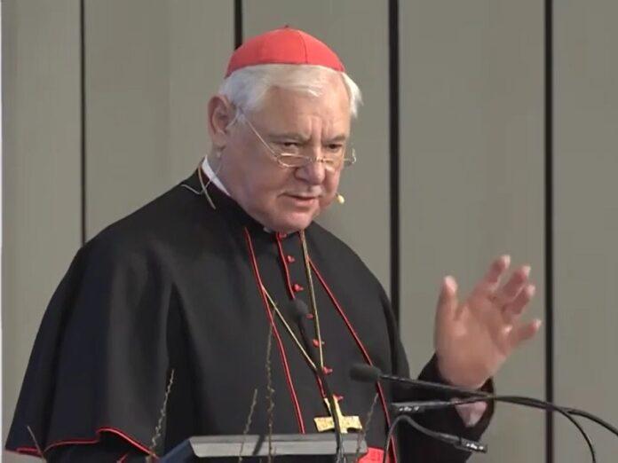 Cardenal Müller «La libertad de creencia