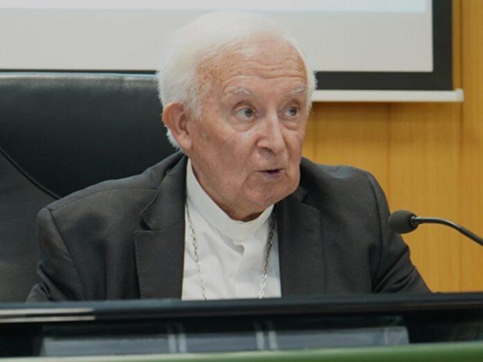 Cardenal Cañizares: «La libertad religiosa